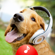animal sounds ringtones free 4.17 apk