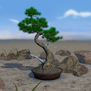 Bonsai 3D Live Wallpaper 4.4 and up Apk for android