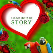Download Parrot Insta DP 5.2 Apk for android