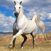 Download Horses Jigsaw Puzzles 2.10.9 Apk for android
