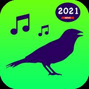 Download Todos Cantos de Pássaros Brasil - Cantos das Aves 3.6.5 Apk for android