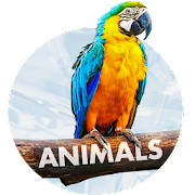 animals wallpapers - free backgrounds 1.1.8 apk